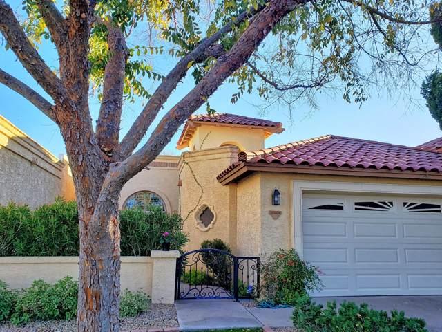 10569 E Fanfol Lane, Scottsdale, AZ 85258 (MLS #6022583) :: The Kenny Klaus Team