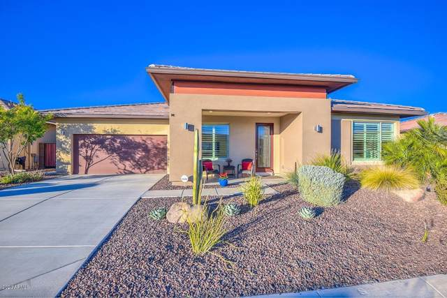 13202 W Skinner Drive, Peoria, AZ 85383 (MLS #6022609) :: The Ramsey Team