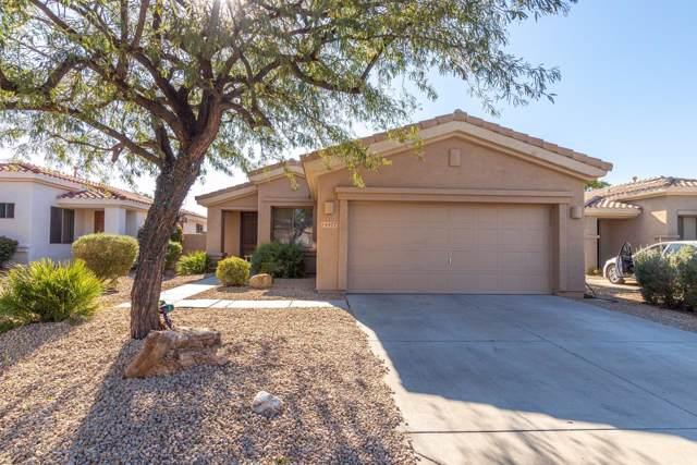 14477 W Indianola Avenue, Goodyear, AZ 85395 (MLS #6022706) :: Lucido Agency