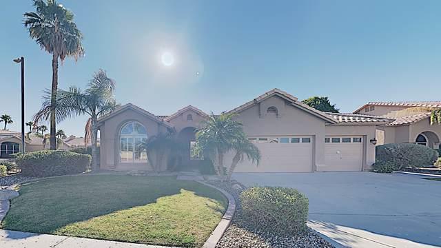 6209 W Rose Garden Lane, Glendale, AZ 85308 (MLS #6022791) :: The Laughton Team