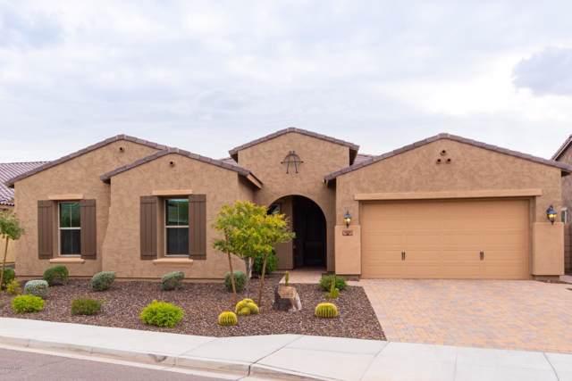 11851 W Duane Lane, Peoria, AZ 85383 (MLS #6022800) :: Arizona Home Group