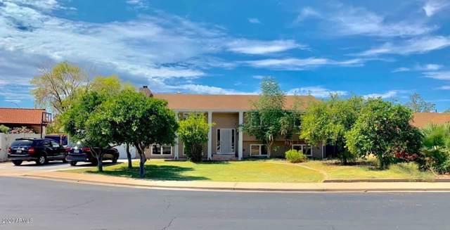 1728 N Spring Circle, Mesa, AZ 85203 (MLS #6023071) :: Brett Tanner Home Selling Team