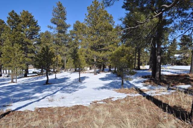 1620 E Castle Hills Drive, Flagstaff, AZ 86005 (MLS #6023262) :: The Helping Hands Team