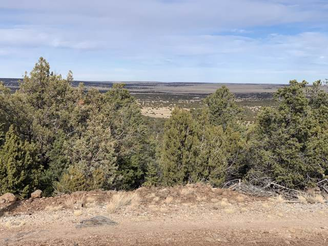 00 County Road N3219, Vernon, AZ 85940 (MLS #6023267) :: The W Group