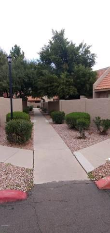 7336 N 43RD Lane, Glendale, AZ 85301 (MLS #6023385) :: Nate Martinez Team