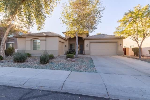 13307 W Rovey Avenue, Litchfield Park, AZ 85340 (MLS #6023432) :: The Kenny Klaus Team
