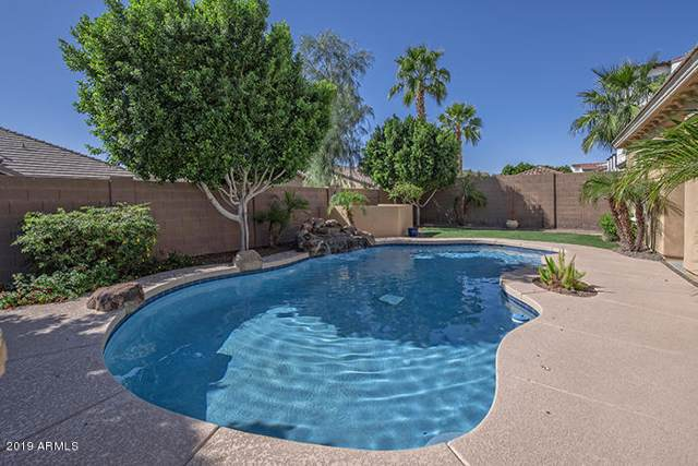 18417 W Palo Verde Avenue, Waddell, AZ 85355 (MLS #6023464) :: Cindy & Co at My Home Group