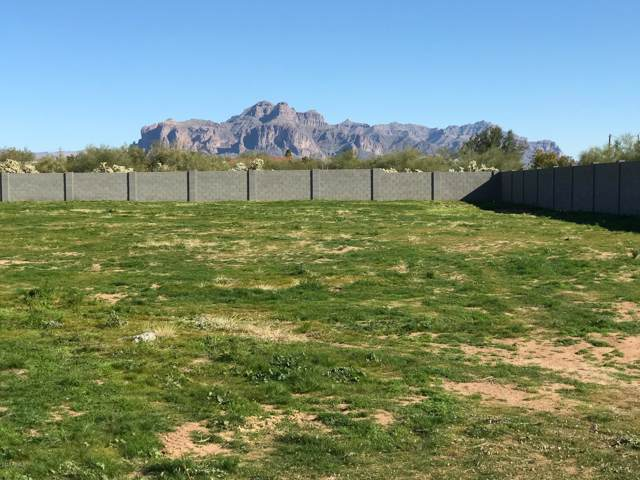 1867. N Meridian Road, Apache Junction, AZ 85120 (MLS #6023592) :: Lux Home Group at  Keller Williams Realty Phoenix