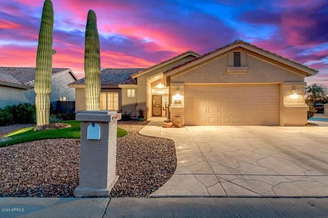 14709 W Cheery Lynn Drive, Goodyear, AZ 85395 (MLS #6023603) :: Kortright Group - West USA Realty