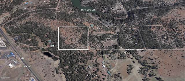 4200 W Coyote Drive, Lakeside, AZ 85929 (MLS #6023644) :: Dave Fernandez Team | HomeSmart