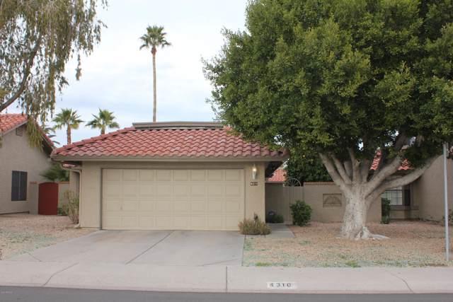 4310 E Sandia Street, Phoenix, AZ 85044 (MLS #6023721) :: Brett Tanner Home Selling Team