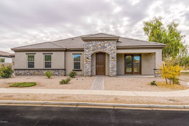 22415 E Sentiero Court, Queen Creek, AZ 85142 (MLS #6023861) :: The Kenny Klaus Team