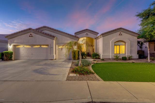 1318 E Catamaran Drive, Gilbert, AZ 85234 (MLS #6023867) :: Relevate | Phoenix