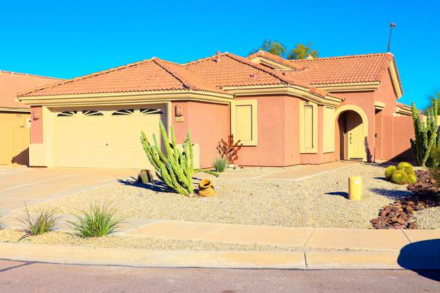 12887 S 175TH Avenue, Goodyear, AZ 85338 (MLS #6024054) :: The Kenny Klaus Team