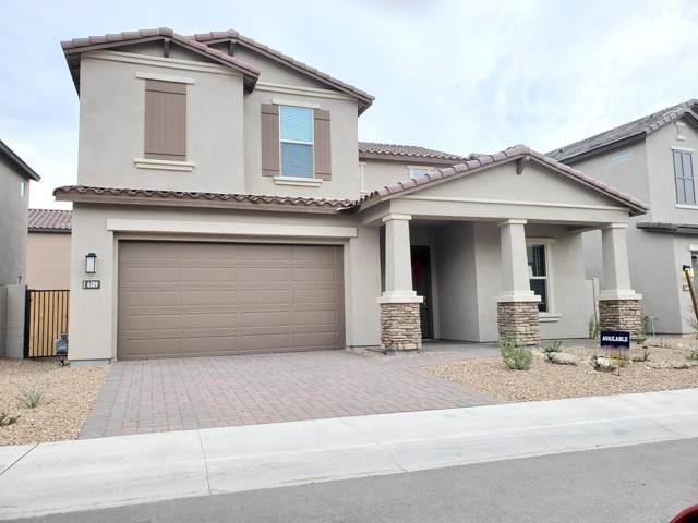 6509 E Rose Marie Lane, Phoenix, AZ 85054 (MLS #6024313) :: The Kenny Klaus Team
