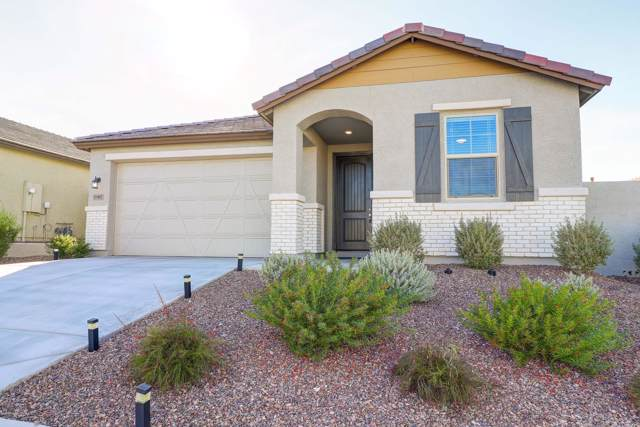 11402 S 175TH Drive, Goodyear, AZ 85338 (MLS #6024364) :: The Kenny Klaus Team