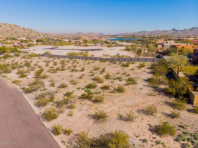 11125 S Santa Columbia Drive, Goodyear, AZ 85338 (MLS #6024418) :: Openshaw Real Estate Group in partnership with The Jesse Herfel Real Estate Group