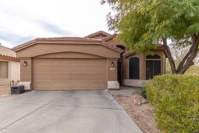 2337 W Oberlin Way, Phoenix, AZ 85085 (MLS #6024646) :: Arizona Home Group
