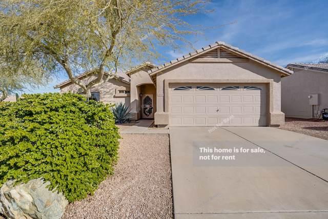 8858 E Amber Sun Way, Gold Canyon, AZ 85118 (MLS #6024716) :: Revelation Real Estate