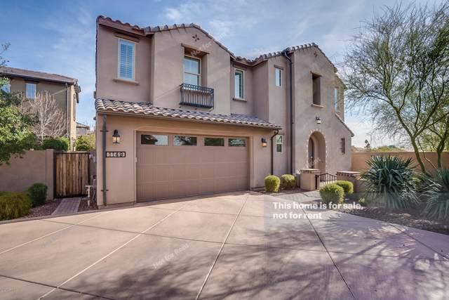 1149 E Muirwood Drive, Phoenix, AZ 85048 (MLS #6024721) :: Yost Realty Group at RE/MAX Casa Grande