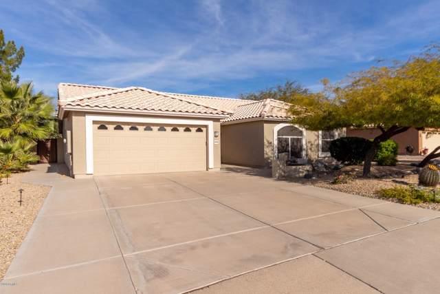 6134 E Preston Street, Mesa, AZ 85215 (MLS #6024755) :: The Kenny Klaus Team