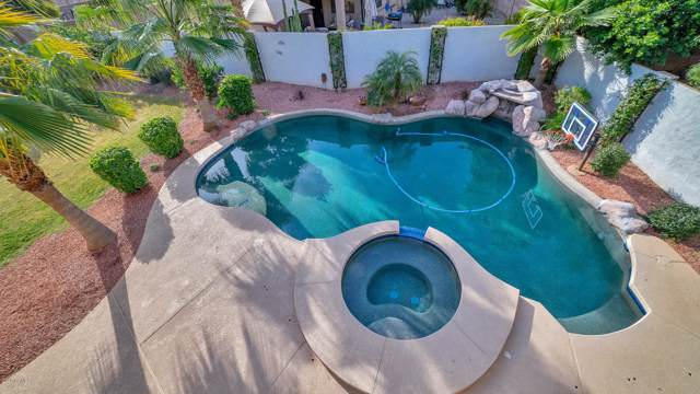 16661 W Baden Avenue, Goodyear, AZ 85338 (MLS #6024788) :: CC & Co. Real Estate Team
