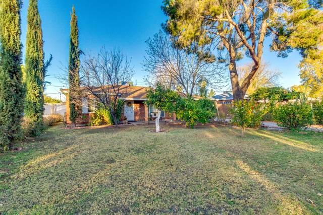 6738 N 11TH Place, Phoenix, AZ 85014 (MLS #6024808) :: Howe Realty