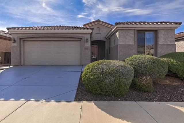 4519 E Donato Drive, Gilbert, AZ 85298 (MLS #6025031) :: Selling AZ Homes Team