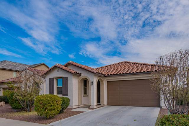 26445 N 131ST Drive, Peoria, AZ 85383 (MLS #6025053) :: The Ramsey Team