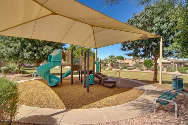 9903 E Farmdale Avenue, Mesa, AZ 85208 (MLS #6025100) :: CC & Co. Real Estate Team