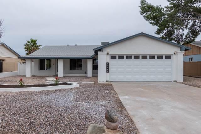 12213 N 25TH Place, Phoenix, AZ 85032 (MLS #6025142) :: CC & Co. Real Estate Team