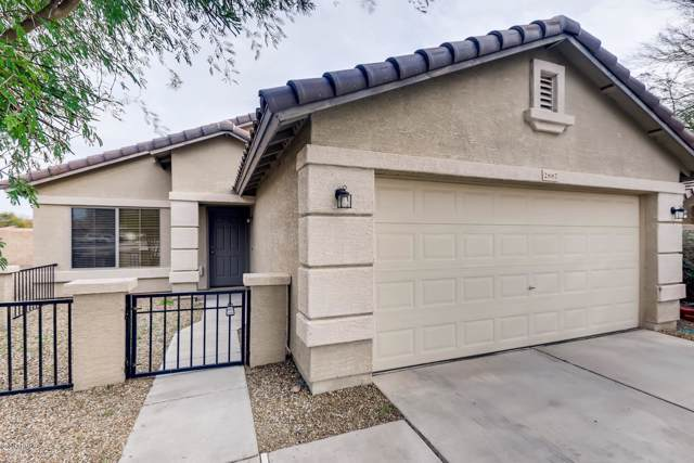 2887 S 257TH Drive, Buckeye, AZ 85326 (MLS #6025154) :: The W Group