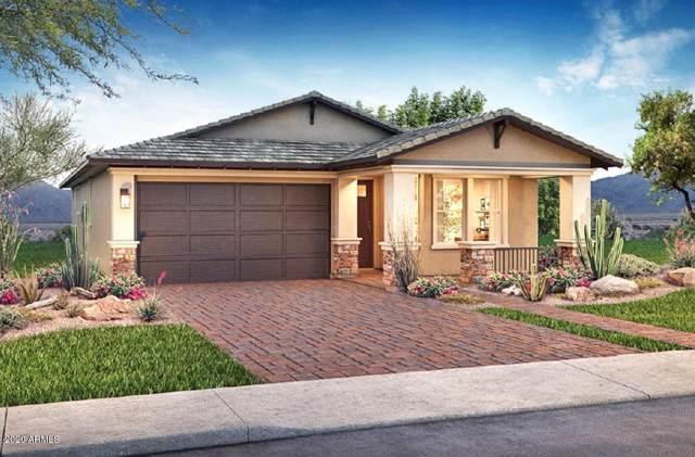 3879 E Dublin Street, Gilbert, AZ 85295 (MLS #6025168) :: The Property Partners at eXp Realty