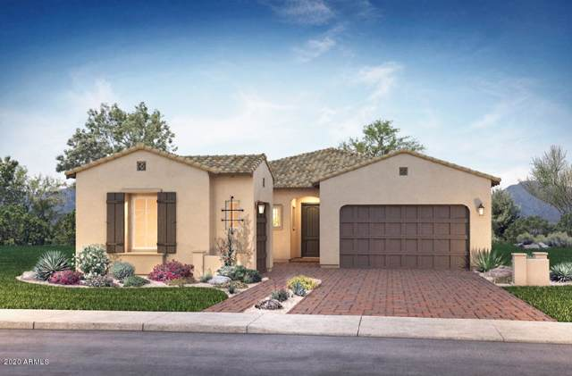 3938 E Megan Street, Gilbert, AZ 85295 (MLS #6025173) :: The Property Partners at eXp Realty