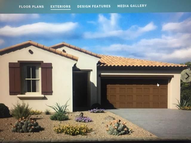 21091 W Berkeley Road, Buckeye, AZ 85396 (MLS #6025255) :: Arizona Home Group