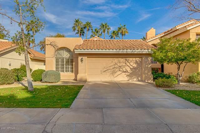 3234 E Briarwood Terrace, Phoenix, AZ 85048 (MLS #6025278) :: Yost Realty Group at RE/MAX Casa Grande