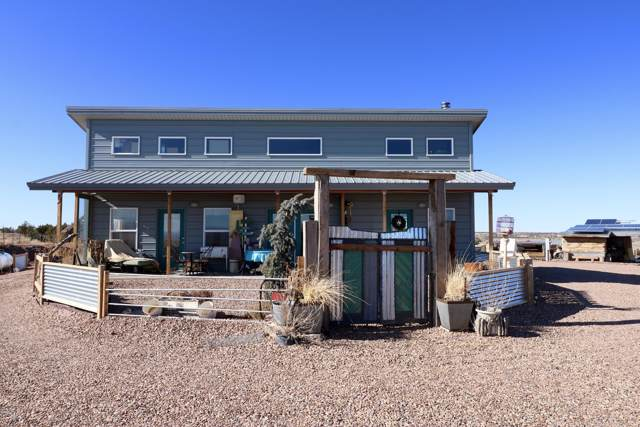 264 S Freeman Hollow Road, Snowflake, AZ 85937 (MLS #6025280) :: Lifestyle Partners Team