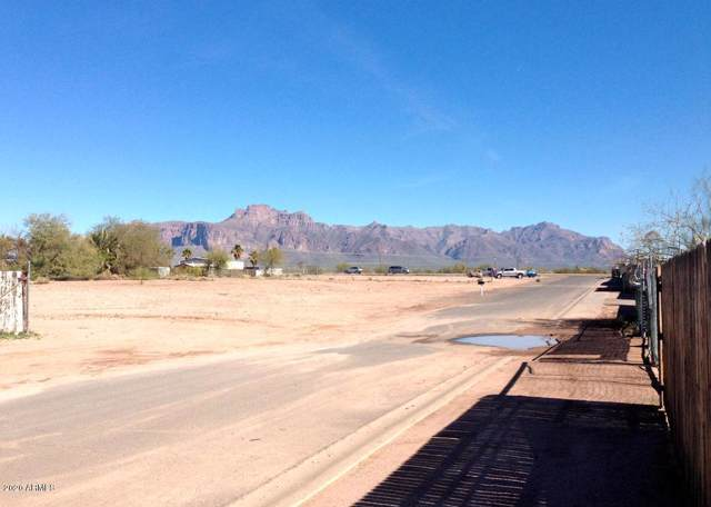 1443 E 17TH Avenue, Apache Junction, AZ 85119 (MLS #6025378) :: The Property Partners at eXp Realty