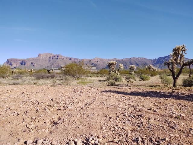 6646 E Arroyo Verdi Road, Gold Canyon, AZ 85118 (MLS #6025406) :: Dijkstra & Co.