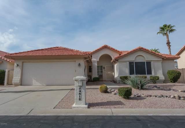 24816 S Foxglenn Drive, Sun Lakes, AZ 85248 (MLS #6025421) :: Team Wilson Real Estate