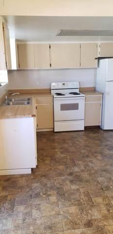 6565 N 19TH Avenue #31, Phoenix, AZ 85015 (MLS #6025459) :: Yost Realty Group at RE/MAX Casa Grande