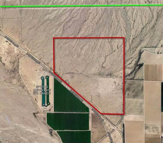 30701 W Riggs Road, Buckeye, AZ 85326 (MLS #6025568) :: Long Realty West Valley