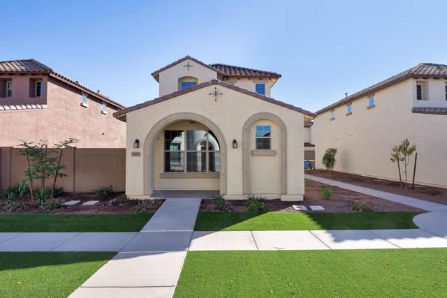 9412 S 34TH Drive, Laveen, AZ 85339 (MLS #6025578) :: Brett Tanner Home Selling Team