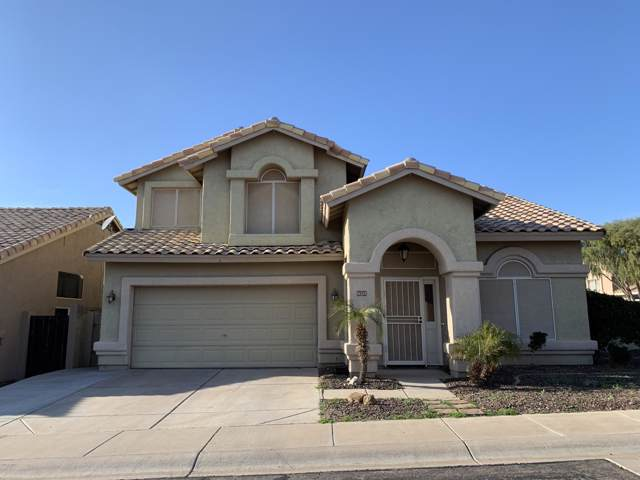 16224 S 13th Street, Phoenix, AZ 85048 (MLS #6025630) :: Revelation Real Estate