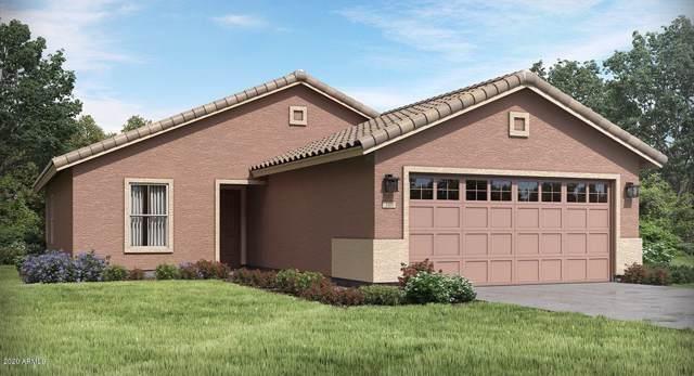 16580 W Charlotte Drive, Surprise, AZ 85387 (MLS #6025680) :: Arizona Home Group