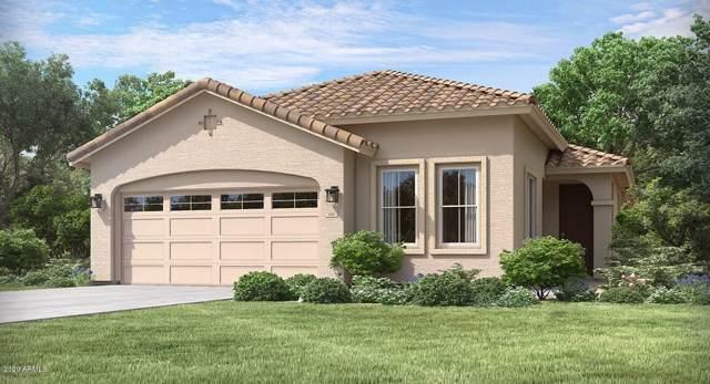 16586 W Charlotte Drive, Surprise, AZ 85387 (MLS #6025686) :: Arizona Home Group