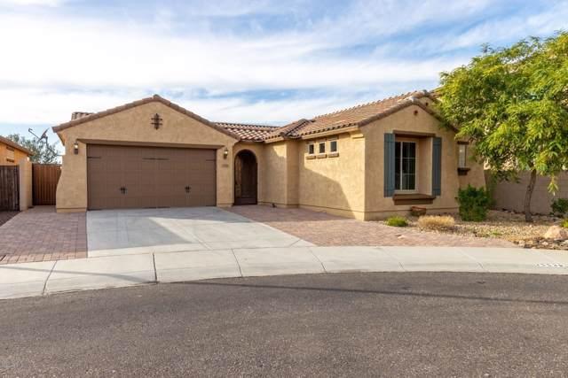 25538 N 105TH Drive, Peoria, AZ 85383 (MLS #6025720) :: The Carin Nguyen Team