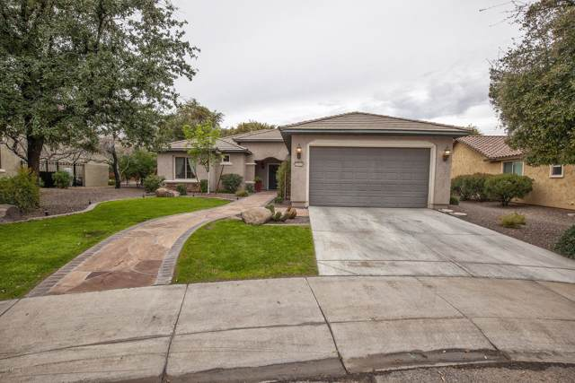 19836 N 264TH Avenue, Buckeye, AZ 85396 (MLS #6025730) :: Brett Tanner Home Selling Team