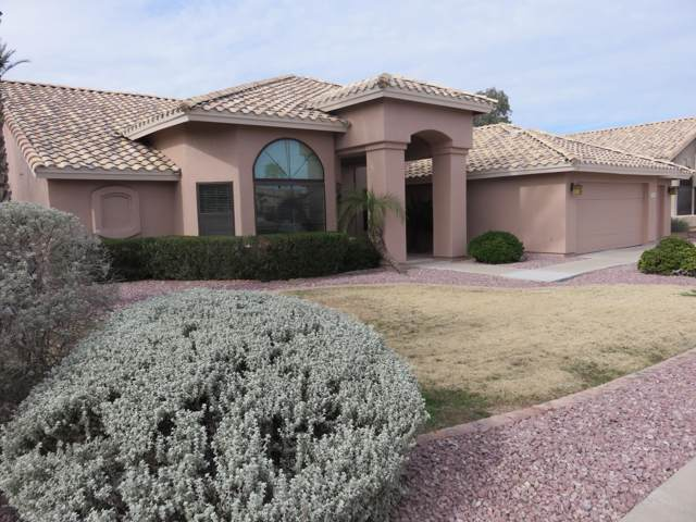 1140 N Vienna Court, Chandler, AZ 85226 (MLS #6025865) :: My Home Group