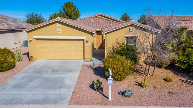 20081 N Pelican Lane, Maricopa, AZ 85138 (MLS #6025883) :: Yost Realty Group at RE/MAX Casa Grande